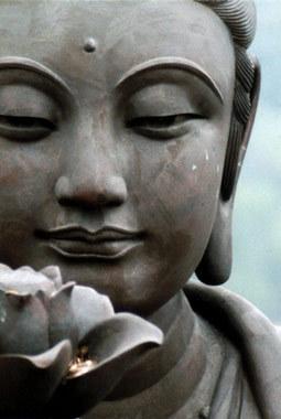 buddha-lotus-flower-symbol